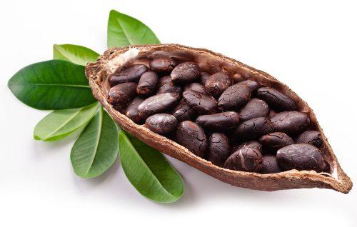 vegan-chocolate-soft-serve-mix